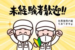 【宗像市】日勤×高時給✨紹介予定派遣もあります!